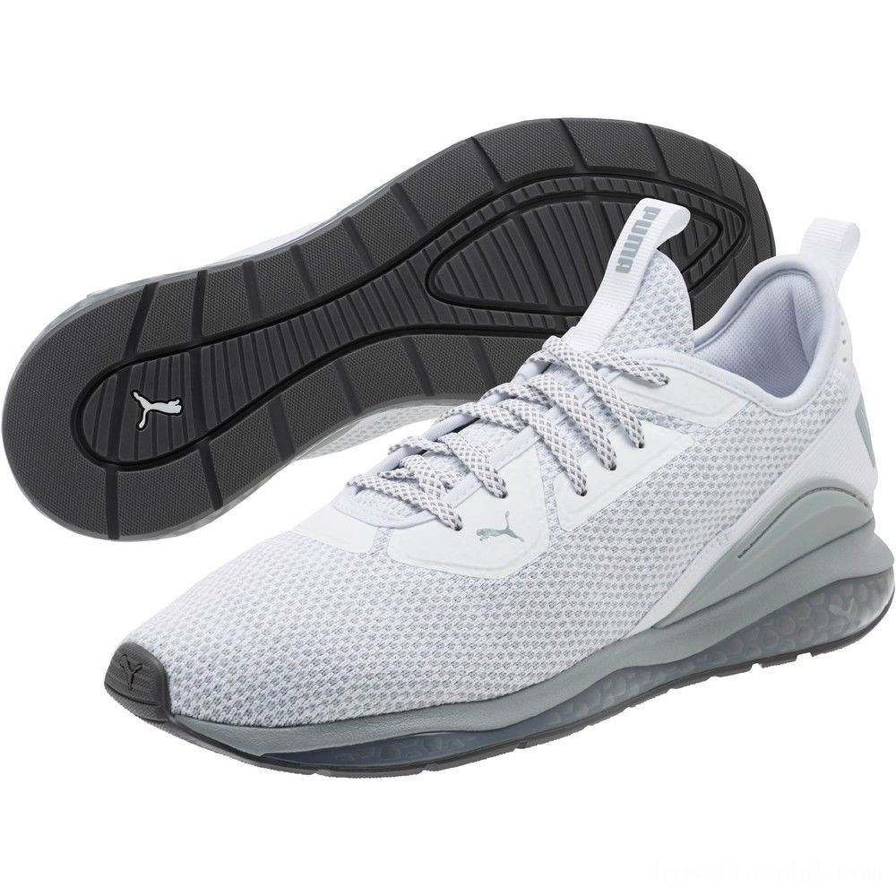Puma Cell Descend Men's Running Shoes White-Quarry-Iron Gate Sales